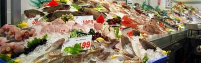 Mediterranean Fish Recipes