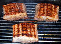 Salmon on the Griddle Plate