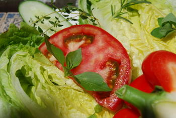 Crisp Lettuce and Fresh Tomatoes