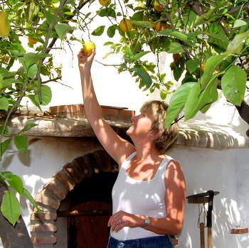 Pam Picks the Marmalade Lemons