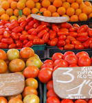 A variety of Fresh Tomatoes